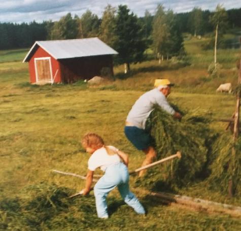 Nybyggartraditioner i den norrländska samtiden